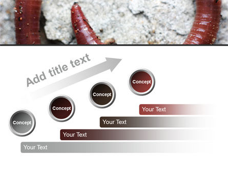Earthworm PowerPoint Template Slide 9