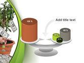 Money Tree Growing PowerPoint Template#10