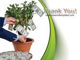 Money Tree Growing PowerPoint Template#20