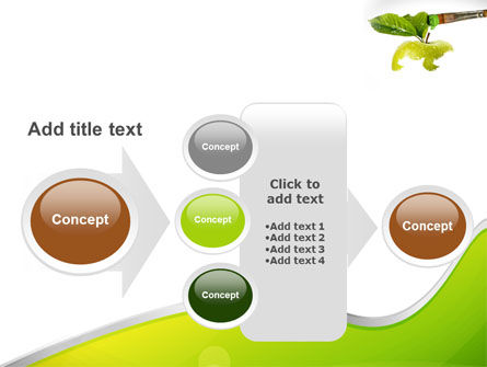 Painting Apple PowerPoint Template Slide 17