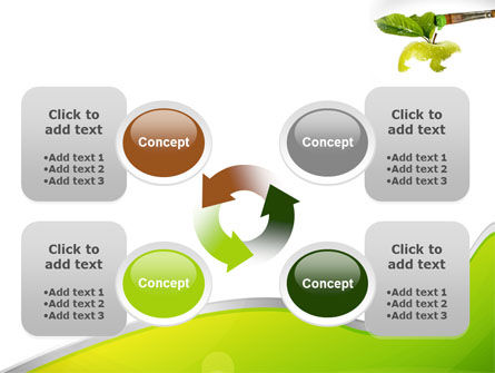 Painting Apple PowerPoint Template Slide 9