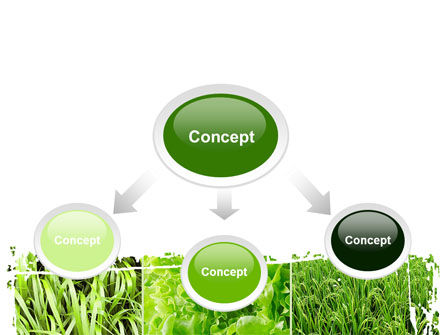 Agronomy And Agriculture PowerPoint Template, Slide 4, 09148, Nature & Environment — PoweredTemplate.com