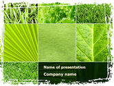Nature & Environment: Agronomy And Agriculture PowerPoint Template #09148