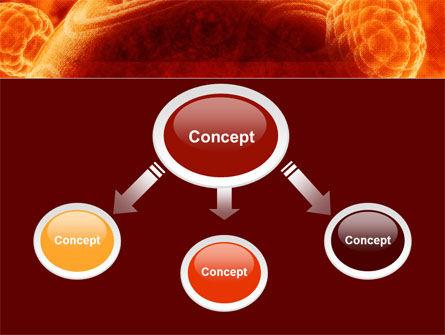 Red Sphere PowerPoint Template, Slide 4, 09186, Technology and Science — PoweredTemplate.com