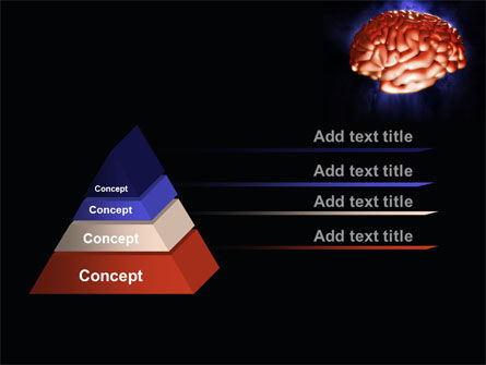 Human Brain in Three Dimensions PowerPoint Template, Slide 4, 09223, Medical — PoweredTemplate.com