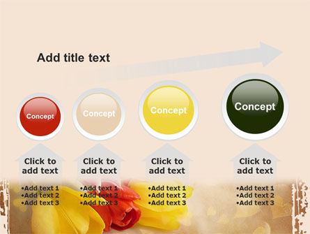 Tulip PowerPoint Template Slide 13
