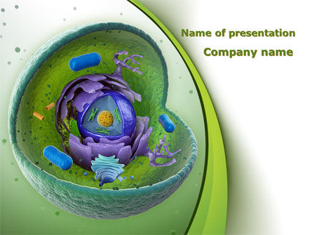 animal cell cut away powerpoint template, backgrounds | 09366, Modern powerpoint
