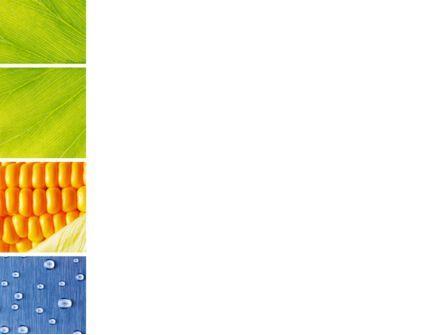 Wet Green Leaf PowerPoint Template, Slide 3, 09414, Agriculture — PoweredTemplate.com