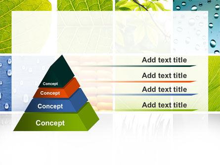 Wet Green Leaf PowerPoint Template Slide 12