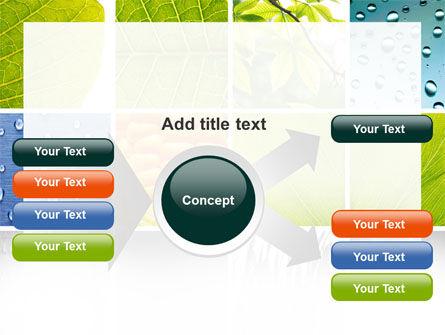 Wet Green Leaf PowerPoint Template Slide 14