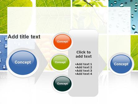 Wet Green Leaf PowerPoint Template Slide 17