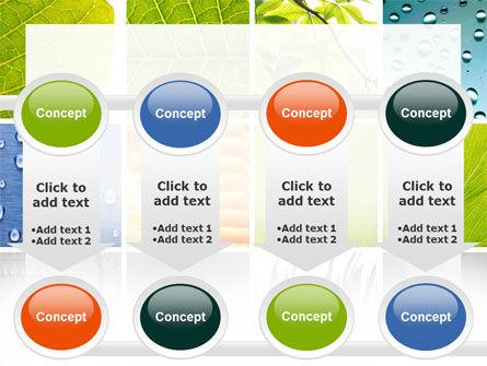 Wet Green Leaf PowerPoint Template Slide 18