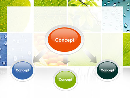 Wet Green Leaf PowerPoint Template Slide 4