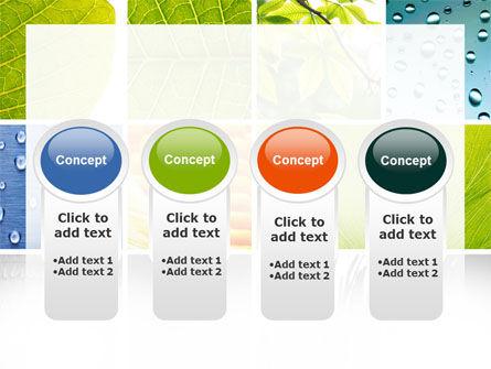 Wet Green Leaf PowerPoint Template Slide 5
