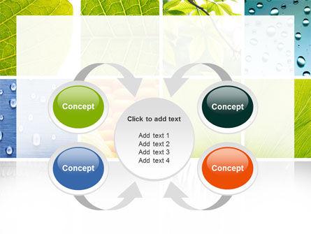 Wet Green Leaf PowerPoint Template Slide 6