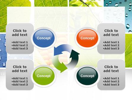 Wet Green Leaf PowerPoint Template Slide 9