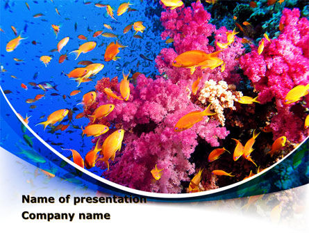 Coral Reef Fishing PowerPoint Template, 09417, Nature & Environment — PoweredTemplate.com
