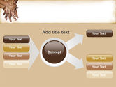 Palm to Palm PowerPoint Template#14