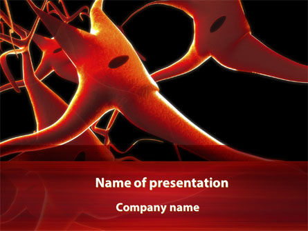 Nervous System PowerPoint Template, 09455, Medical — PoweredTemplate.com