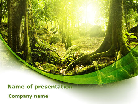 Nature & Environment: Wildernisbos PowerPoint Template #09472