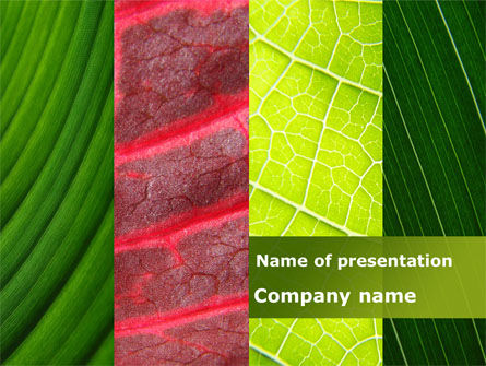 Leafs Cells PowerPoint Template, 09496, Nature & Environment — PoweredTemplate.com