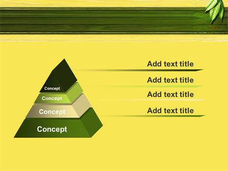 Spring Forest PowerPoint Template, Slide 4, 09517, Nature & Environment — PoweredTemplate.com