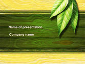 Nature & Environment: Spring Forest PowerPoint Template #09517