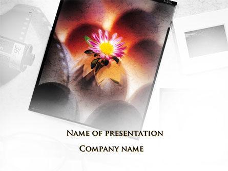 Photography PowerPoint Template, 09545, Nature & Environment — PoweredTemplate.com