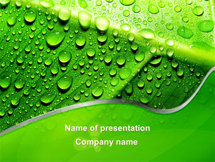 Dew In The Sun On A Green Leaf PowerPoint Template, 09551, Nature & Environment — PoweredTemplate.com