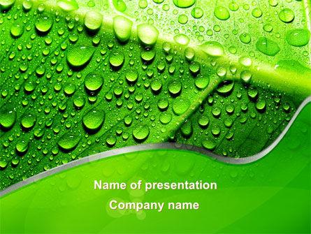 Nature & Environment: Modèle PowerPoint de rosée au soleil sur une feuille verte #09551