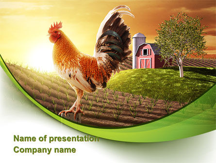 Morning At The Farm PowerPoint Template, 09579, Agriculture — PoweredTemplate.com