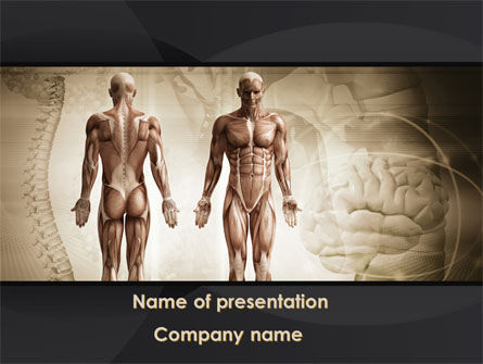 Male Body Anatomy PowerPoint Template, 09632, Medical — PoweredTemplate.com