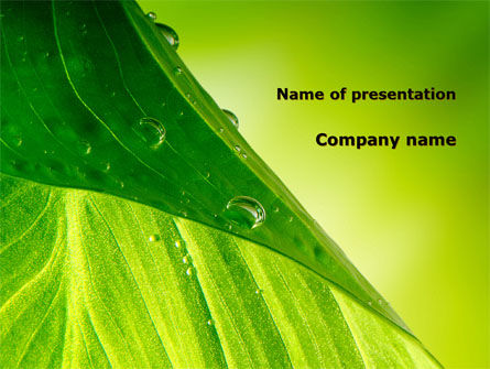 Nature & Environment: Green Leaf With Dew PowerPoint Template #09659