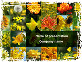 Nature & Environment: Flower Collage PowerPoint Template #09702