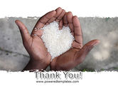 Rice Heart In Palms PowerPoint Template#20