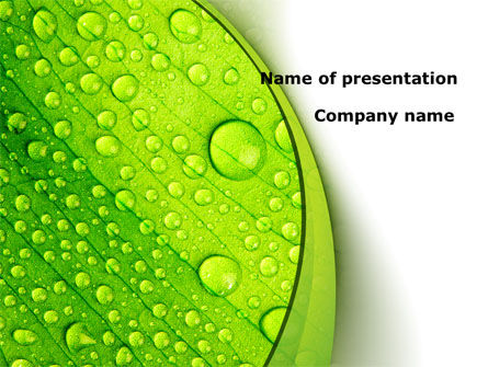 Nature & Environment: Green leaflet In Drops Of Dew PowerPoint Template #09733