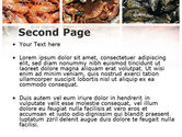 Shrimps And Crabs With Oysters PowerPoint Template#2