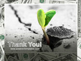 Sprout Of Money Tree PowerPoint Template#20