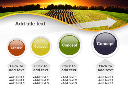 Arable Land At Sunset PowerPoint Template Slide 13
