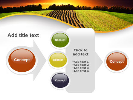 Arable Land At Sunset PowerPoint Template Slide 17