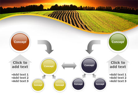 Arable Land At Sunset PowerPoint Template Slide 19