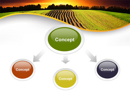 Arable Land At Sunset PowerPoint Template, Slide 4, 09774, Agriculture — PoweredTemplate.com
