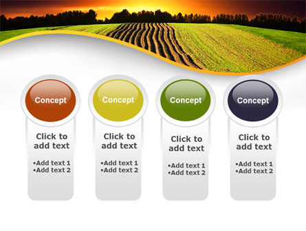 Arable Land At Sunset PowerPoint Template Slide 5