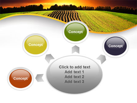 Arable Land At Sunset PowerPoint Template Slide 7