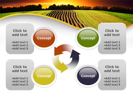 Arable Land At Sunset PowerPoint Template Slide 9