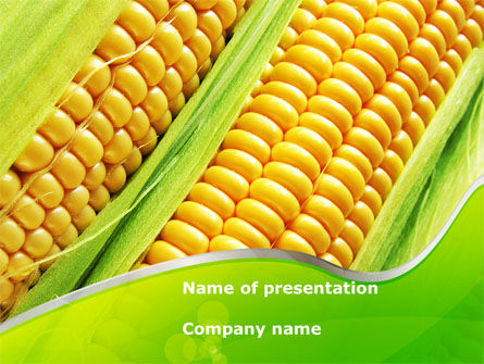 Agriculture: Ear Of Corn PowerPoint Template #09782