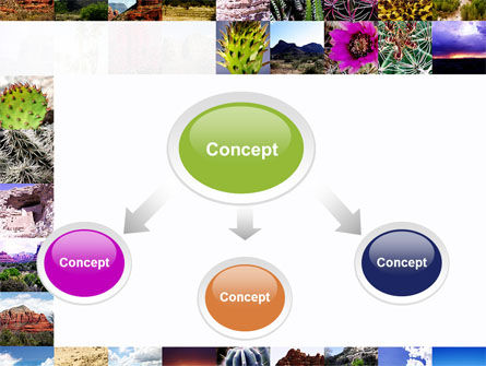 American Wild Life PowerPoint Template, Slide 4, 09797, Nature & Environment — PoweredTemplate.com