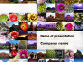 Nature & Environment: American Wild Life PowerPoint Template #09797