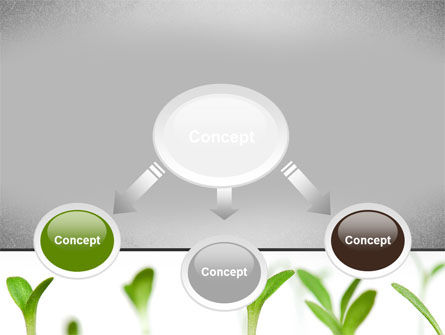 Garden Bed PowerPoint Template, Slide 4, 09829, Nature & Environment — PoweredTemplate.com