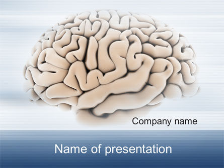 Human Brain Preparation PowerPoint Template, 09833, Medical — PoweredTemplate.com